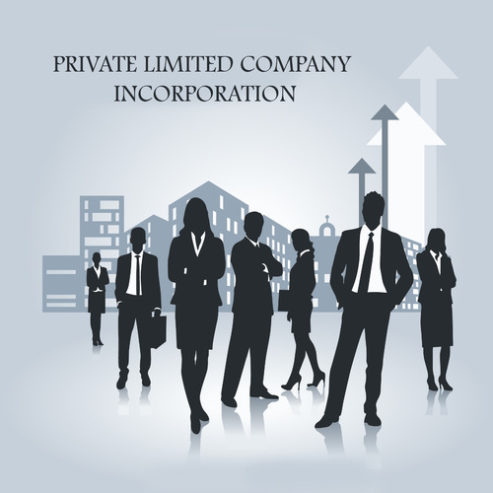 private-limited-company-services-500×500-1